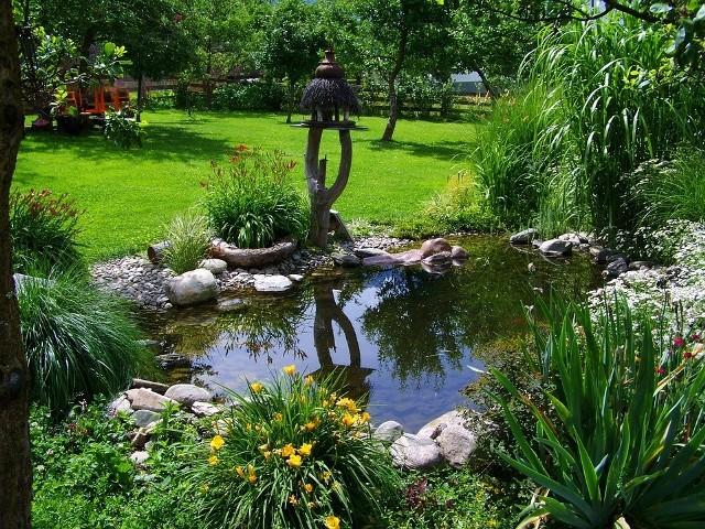 Budowa oczka wodnego możliwa jest już w ogrodach o średniej wielkości.
