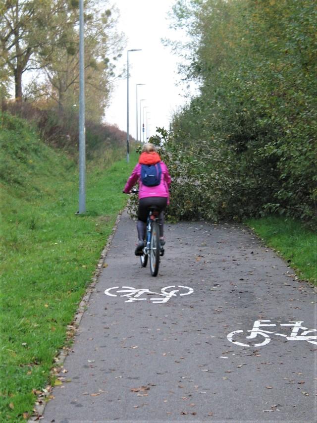 Po weekendzie było bez zmian, zwalone drzewo nadal tarasowało drogę rowerową Słupsk - Głobino