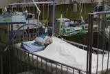 2-letnie dziecko wypadło z okna w Chorzowie. Co bracia robili nocą na parapecie?
