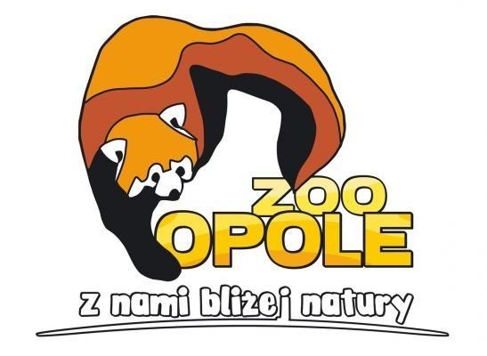 Panda ruda jest w logo opolskiego ogrodu zoologicznego.