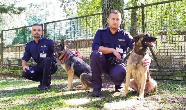 Sierżant sztabowy Rafał Grzegorczyk z KMP w Ostrołęce wraz z psem służbowym Korem - z prawej