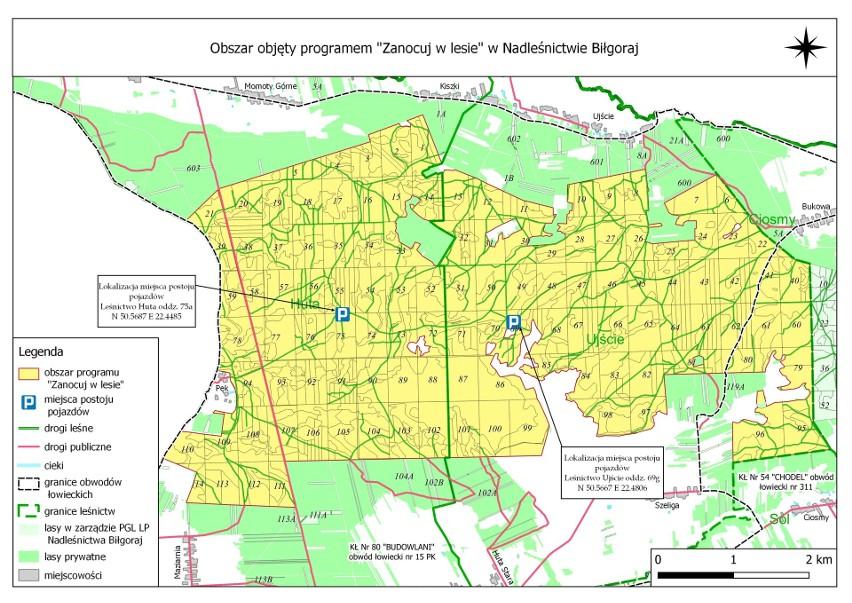 Biwak w lesie. Gdzie w województwie lubelskim można rozbić namiot? Zobacz mapy