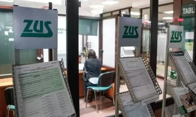 Osoby prowadzące działalność gospodarczą składają oświadczenie w ZUS, mogą to zrobić drogą elektroniczną przez Platformę Usług Elektronicznych. Zdjęcie ilustracyjne