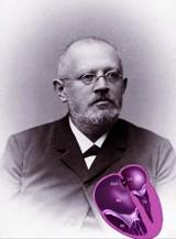 Z Jawora do Getyngi. Świat przypomina sobie o Wilhelmie Ebsteinie. Rozmowa z dr Maglaleną Mazurak
