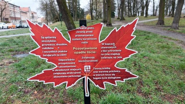 Zniszczona tablica w kształcie liścia w Parku Tysiąclecia w Zielonej Górze
