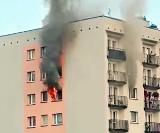 Tragiczny pożar wieżowca w Mysłowicach. Kobieta zginęła w płomieniach