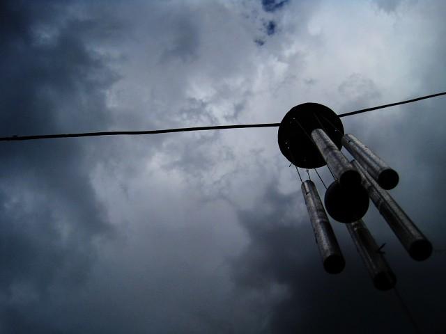 Prognoza pogody (11.01.2015). Silny wiatr uszkodził linie energetyczne i połamał drzewa. 11 tys odbiorców bez prądu