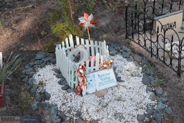 Na osiedlu Kazimierza Wielkiego we Włocławku powstać ma cmentarz dla zwierząt. Jest tam już dużo grobów