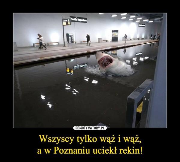 Poznań na demotywatorach gości bardzo często. Z czego śmieją się internauci? Jak nas widzą w Polsce? Zobaczcie!Przejdź do kolejnego zdjęcia --->