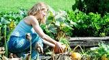 Zaczyna się sezon na ogródki działkowe. Jakim typem działkowca jesteś! Sprawdź się, zrób quiz!