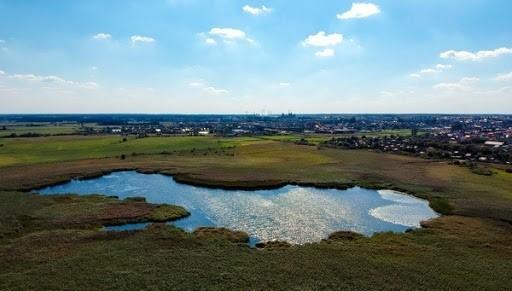 Władze miasta chcą pozyskać 40 milionów złotych na renowację Jeziora Brajmura