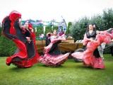 Porywająca muzyka, barwne stroje i tańce czyli VI Spotkania z Kulturą Romską