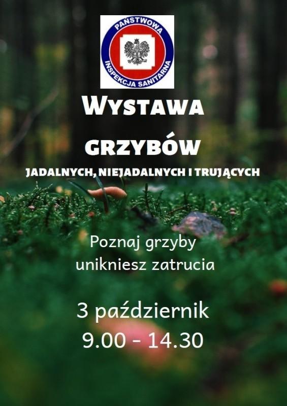 W czwartek koniecznie idź na wystawę grzybów.