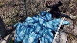 Mysłowice. Akcja Olejki za papierki. Sprzątali okoliczne lasy i otrzymali olejki z konopi