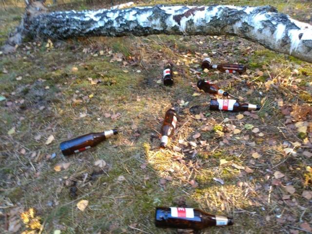 Śmieci nad Zalewem Koronowskim w bród, więcej niż grzybów