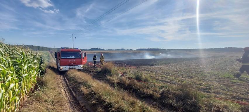 W piątek 30 lipca doszło do dużego pożaru na polach...