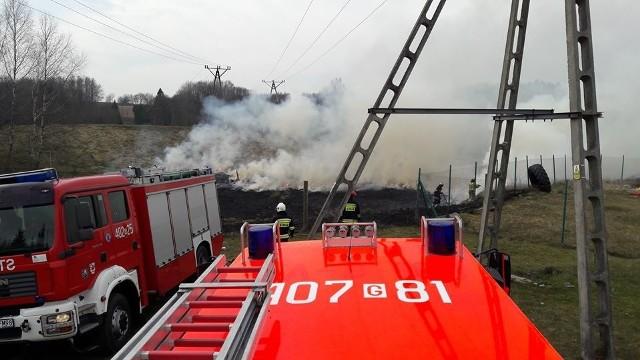Dzisiaj (piątek) w podmiasteckim Świeszynku spaliło się około 30 arów łąki. Pożar mógł się rozprzestrzenić, gdyby nie działania strażaków z Miastka i Piaszczyny. Doszło do zaprószenia ognia.