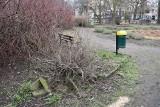 GUBIN: Park w centrum miasta błaga o rewitalizację. Doczeka się w tym roku? [ZDJĘCIA]