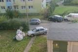 Nie każdy chodnik jest... chodnikiem. Nietypowa reakcja straży miejskiej w Łodzi
