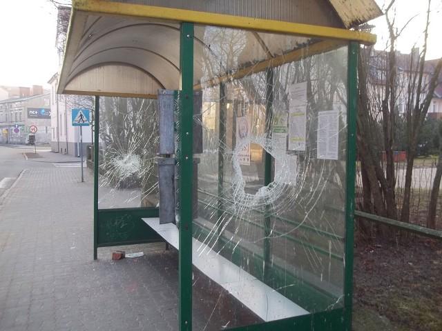 """Tak wyglądały przystanki autobusowe po """"wizycie"""" wandali"""