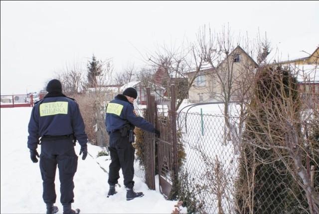Strażnicy miejscy mają prawo sprawdzić, czy właściciel posesji ma umowę na odbiór śmieci.