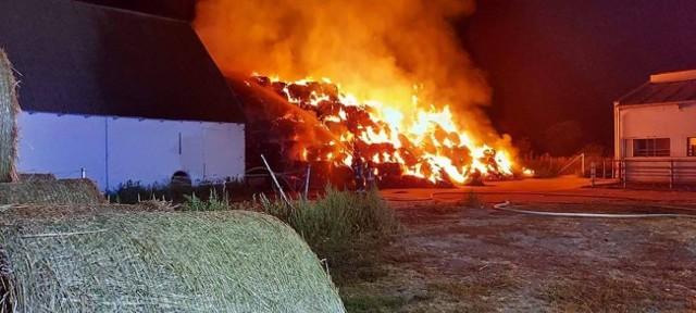 Jak informuje nas mł. bryg. Krzysztof Ferensztajn, zgłoszenie wpłynęło o godzinie 21.13. W akcji gaśniczej udział wzięło 10 zastępów OSP i PSP z powiatów inowrocławskiego i mogileńskiego.Płonął stóg siana w bliskim sąsiedztwie wypełnionej sianem stodoły i obory, w której przebywało 120 cielnych krów.Dzięki sprawnej akcji strażaków ogień nie przeniósł się na te budynki. Nie ma osób poszkodowanych. Nie ucierpiały też zwierzęta.