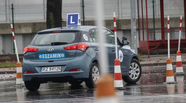 Prawo jazdy zdrożeje. Powodem dodatkowe szkolenia dla świeżo upieczonych kierowców.