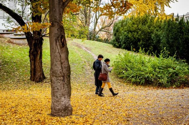 23 Września Pierwszy Dzień Jesieni Prognoza Pogody Na
