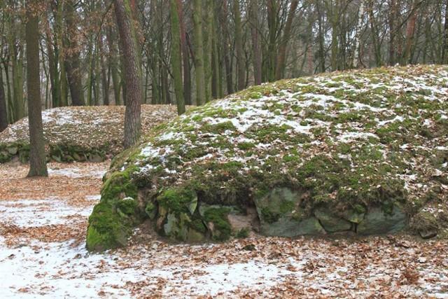 Na zdjęciu grobowce megalityczne z Wietrzychowic
