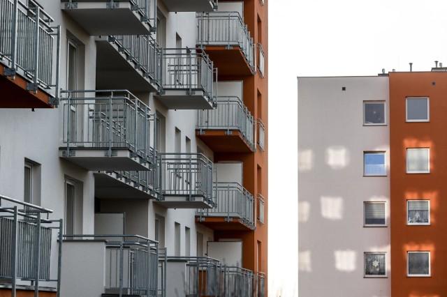 Bezkonkurencyjni pod względem zakupionej powierzchni mieszkalnej w 2019 roku byli Ukraińcy.