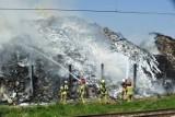 Pożar w Przysiecie Polskiej. Znów płoną śmieci