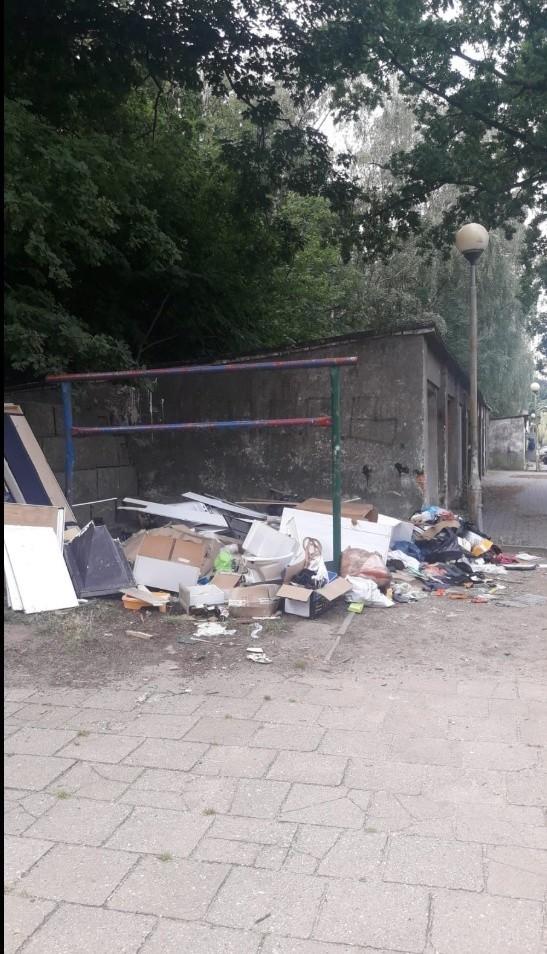 Ktoś regularnie wyrzucał śmieci przy blokach na Ptasiej w...