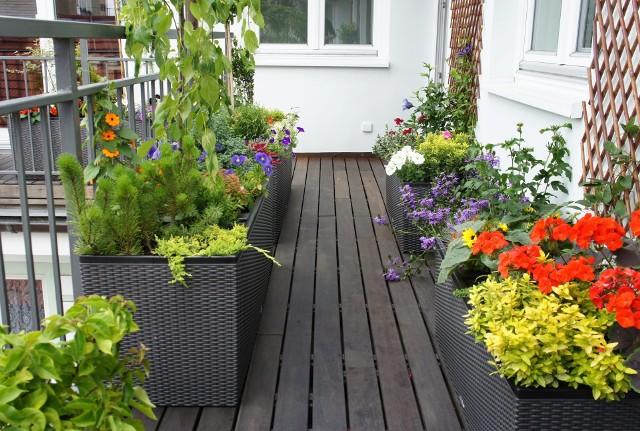 Aranżacja balkonuPiękna, czerwcowa pogoda sprzyja spędzaniu wolnego czasu na powietrzu, w tym również na balkonie lub tarasie.