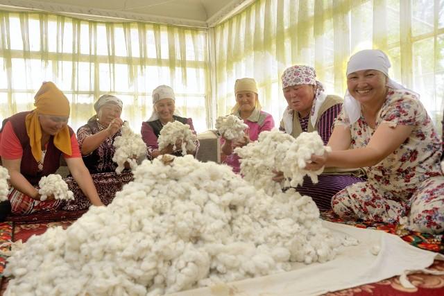 Rolniczki ze spółdzielni producentów bawełny ACSC w Kirgistanie