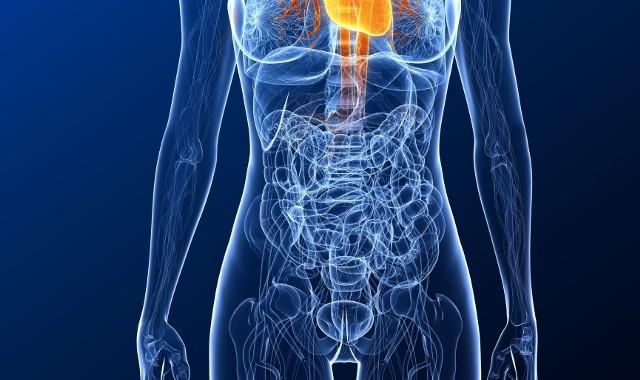 Objawy raka jelita grubego niekiedy bywają utożsamiane z zespołem jelita drażliwego.