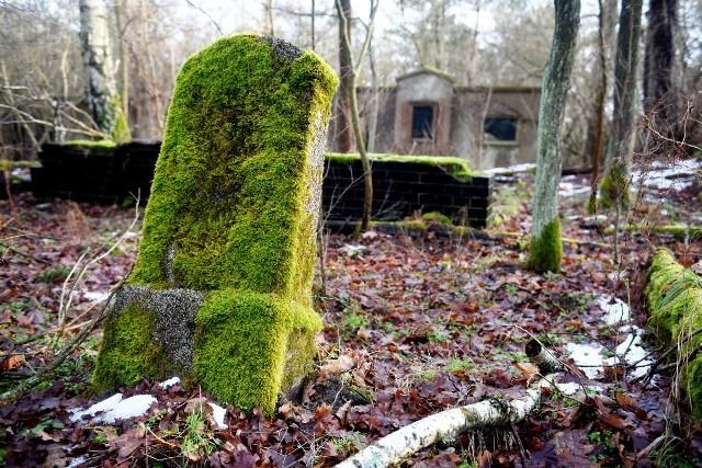 Zaniedbany poewangelicki cmentarz w Nowej Roli. Co za wstyd