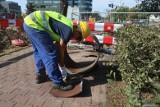 Skargi do inspekcji pracy w Bydgoszczy płyną na potęgę. Czego najczęściej dotyczyły w 2020 roku?