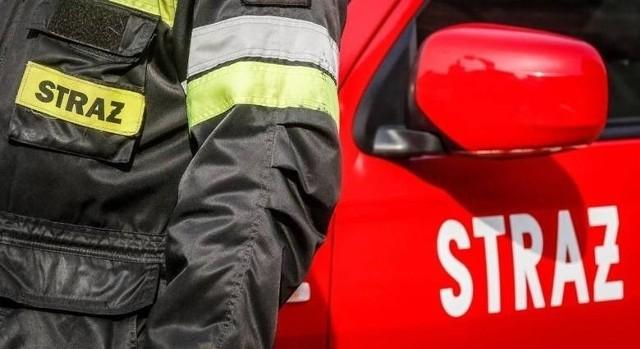 Pożar pustostanu w Silnie gasiło 20 zastępów straży pożarnej