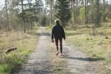 Do tych dolnośląskich lasów nie wejdziemy! Zakaz wstępu do 30 kwietnia