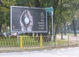 """""""Stop Komunii Świętej na rękę!"""". Kontrowersyjne billboardy w Szczecinie"""