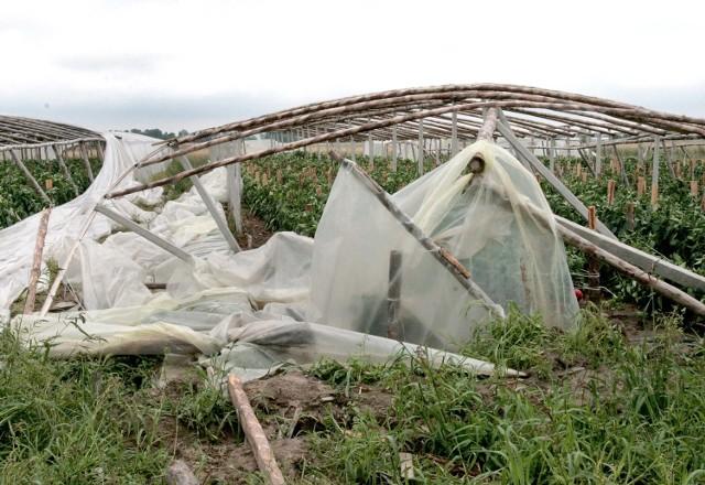 Tysiące rolników z regionu radomskiego poniosło straty w lipcowej burzy