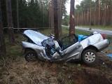 Przewięź. Śmiertelny wypadek. Audi uderzyło w drzewo (zdjęcia)