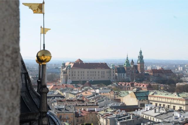 Wieża Mariacka ma 80 m wysokości, by spojrzeć na Kraków z perspektywy kościelnej wieży, trzeba pokonać 239 schodków, by dostać się na wysokość 54 metrów.Nazywana także Wieżą Straży, Budzielną, Alarmową lub Hejnalicą - jest jedyną na świecie, z której od przeszło sześciuset lat przez całą dobę co godzina trębacz gra hejnał na cztery strony świata.Podobno widać stąd wszystkie polskie ziemie: na południu białe szczyty Tatr, na zachodzie kominy Śląska, na wschodzie wieże kościołów Lwowa, na północy granatową linię Bałtyku. Z pewnością to wina smogu, że dziś wzrok tak daleko nie sięga. Historia głosi, że w czasie trzęsienia ziemi w 1443 roku zawaliły się w Krakowie różne mniejsze budowle, ale Wieża Mariacka ani drgnęła.