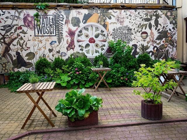 """III miejsce - """"Zjadliwości""""""""Zjadliwości"""" nagrodzono drugim miejscem za różnorodność bujnej zieleni, mural i atmosferę ogródka. """"Żebra"""" za przyciągającą oko ekspozycję roślinności na trudnym do zaaranżowania chodniku ul. Piotrkowskiej.Kto wygrał - zobacz na następnym slajdzie"""
