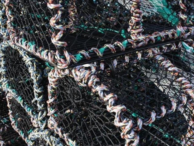 Mężczyźni zajmowali się nielegalnym połowem ryb na łowiskach w powiecie włocławskim.