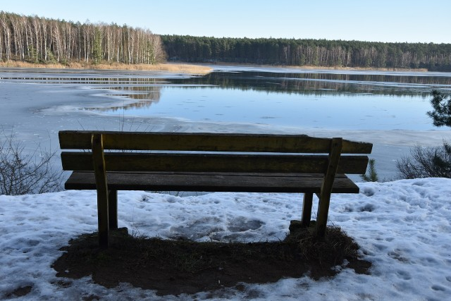 Nad Zalew Koronowski warto wybrać się także zimą