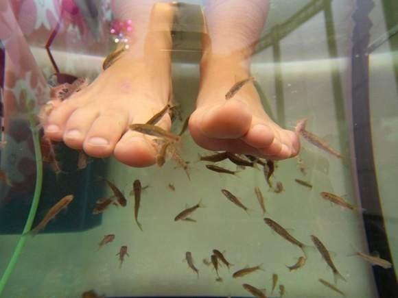 Jak to jest umawiać się z kobietą z akwarium