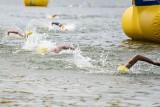 """""""Wpław przez Kiekrz"""" - wystartował najstarszy maraton pływacki w Polsce. Wzięło w nim udział prawie 150 zawodników"""