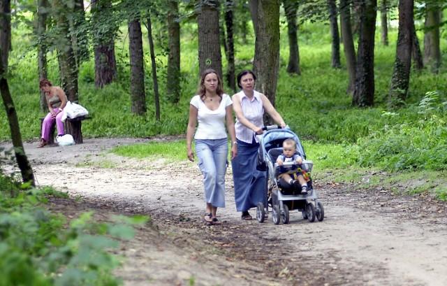 Park Leśny Klęskowo służy mieszkańcom jako miejsce spacerów i odpoczynku. Od interpretacji przepisów zależy, czy powstanie tu również tor dla rowerzystów.