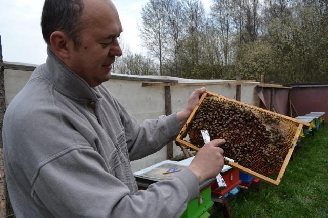 Sławomir Wnuk radzi, by pogłębiać wiedzę na temat pszczelarstwa